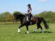 Terri riding Dita in the field on returning home