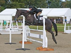 Tinka jumping the Intermediate Novice at Pulborough