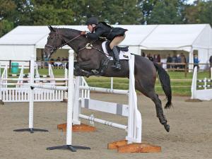 Tinka jumping the Intermediate Novice at Pulborough