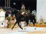 Morgan and Smurf, HOYS 2012