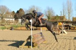 Jasmine sees XC jumps for the first time